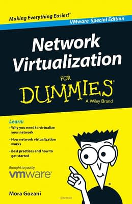 Network Virtualization for Dummies